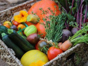 Atelier culinaire: Légumes de saison @ Salle municipale